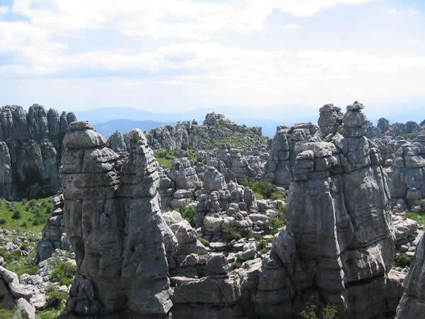HIKING IN EL TORCAL
